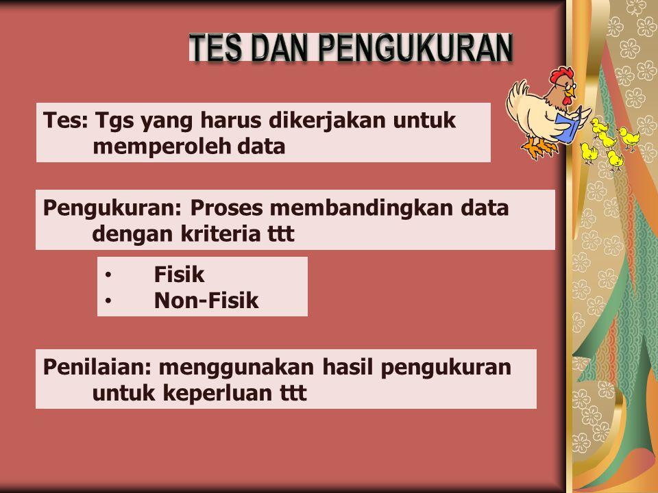 TES DAN PENGUKURAN Tes: Tgs yang harus dikerjakan untuk memperoleh data. Pengukuran: Proses membandingkan data dengan kriteria ttt.