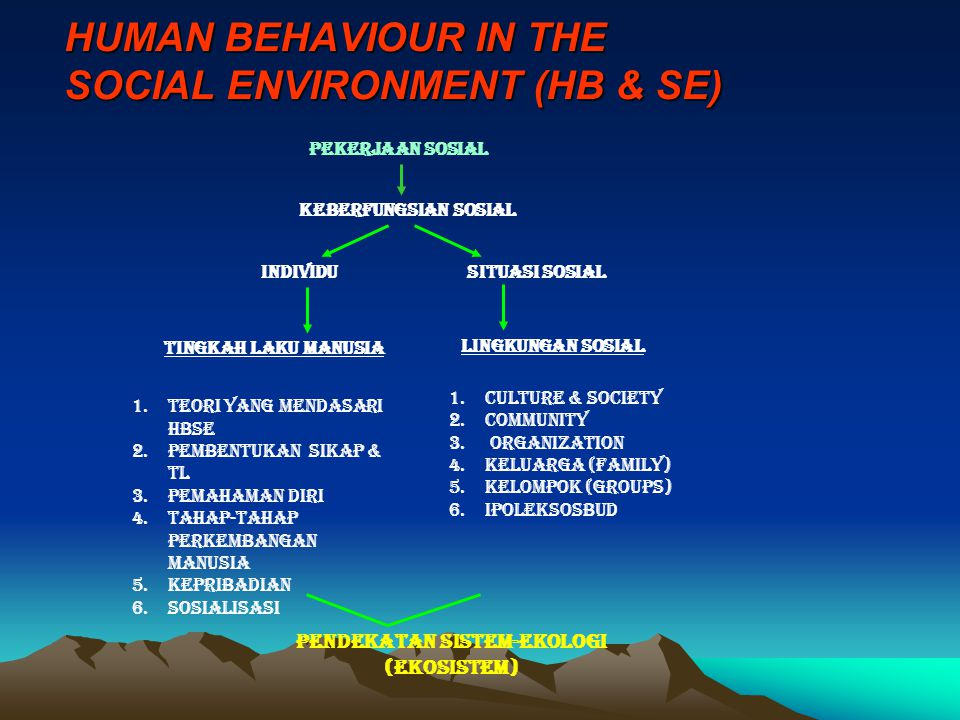 HUMAN BEHAVIOUR IN THE SOCIAL ENVIRONMENT (HB & SE)