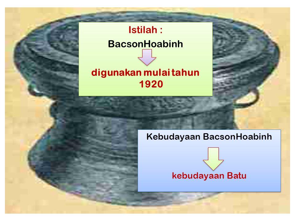 Kebudayaan BacsonHoabinh