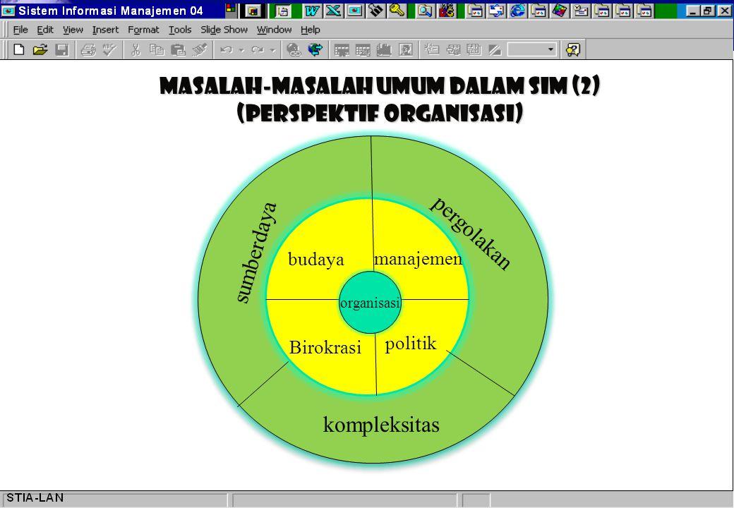 Masalah-masalah Umum dalam SIM (2) (Perspektif organisasi)