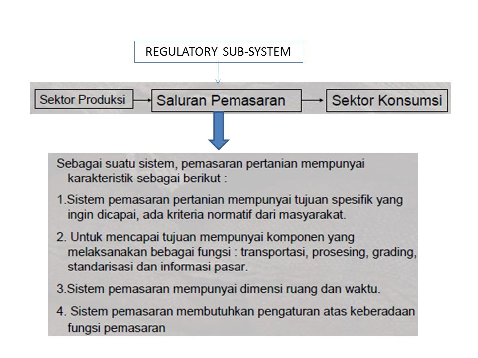 REGULATORY SUB-SYSTEM