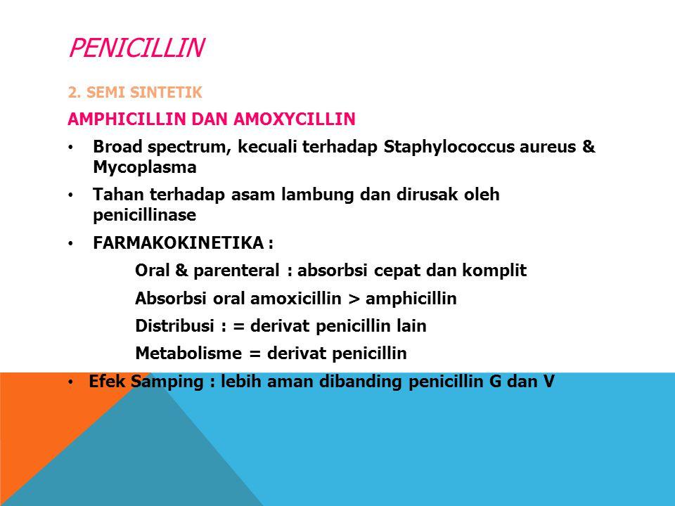 PENICILLIN AMPHICILLIN DAN AMOXYCILLIN