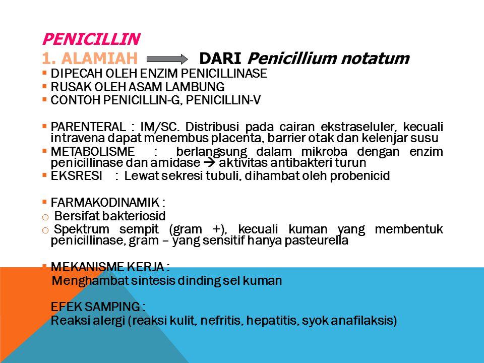 1. ALAMIAH DARI Penicillium notatum