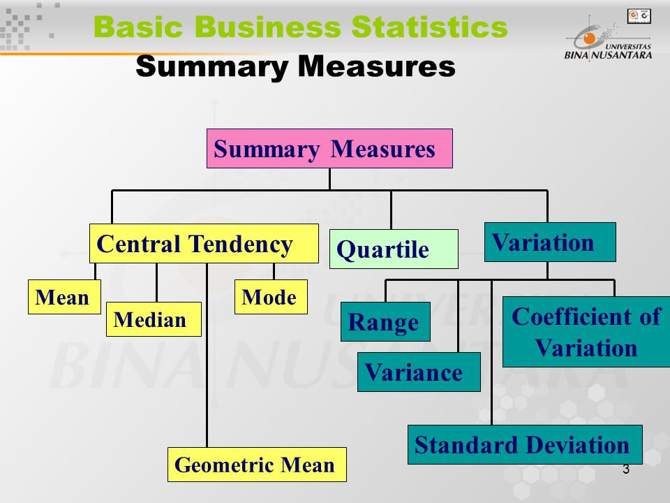 Basic Business Statistics Summary Measures
