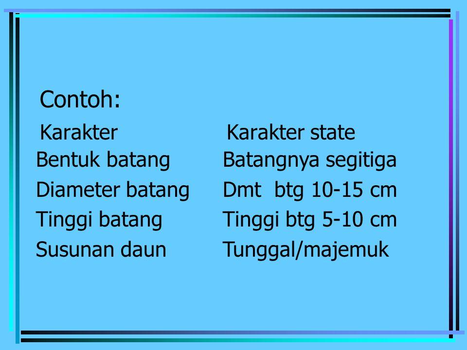 Contoh: Karakter Karakter state Bentuk batang Batangnya segitiga