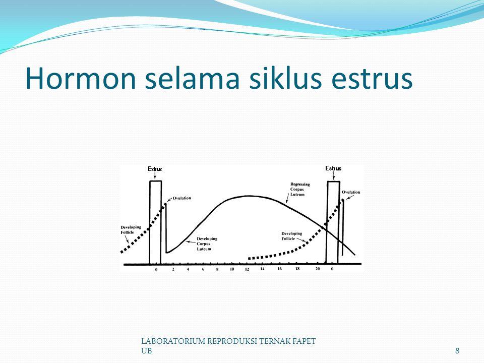 Hormon selama siklus estrus