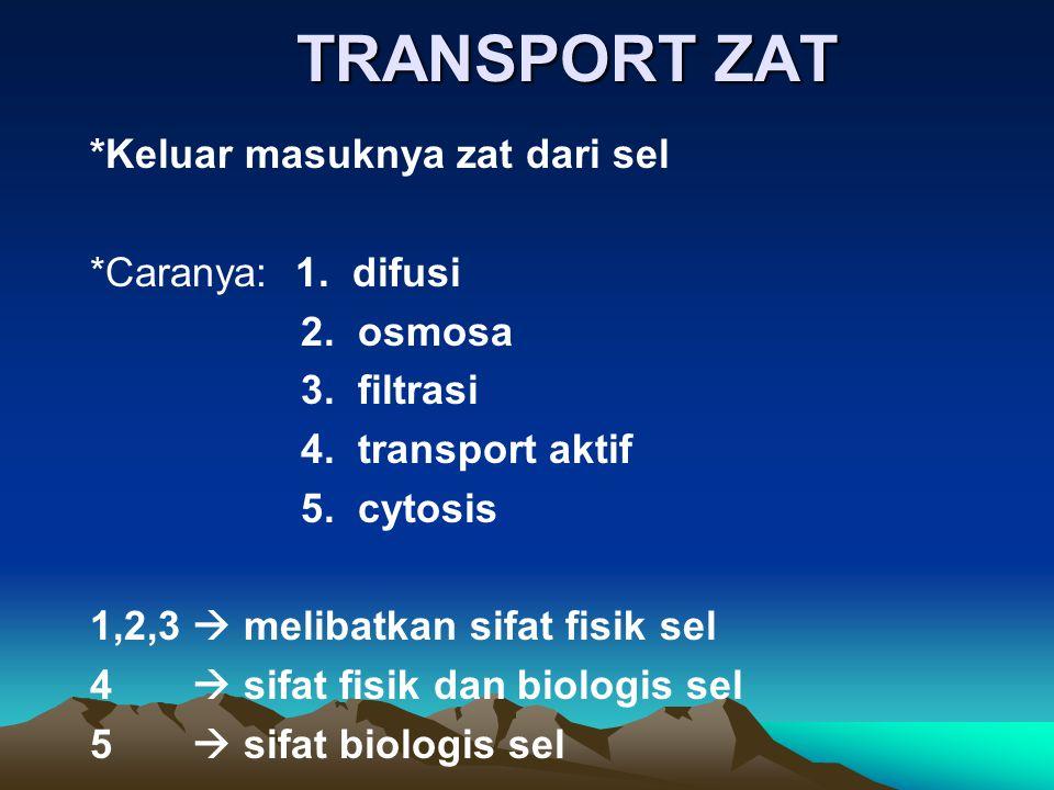 TRANSPORT ZAT *Keluar masuknya zat dari sel *Caranya: 1. difusi