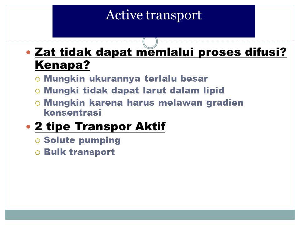 Active transport Zat tidak dapat memlalui proses difusi Kenapa