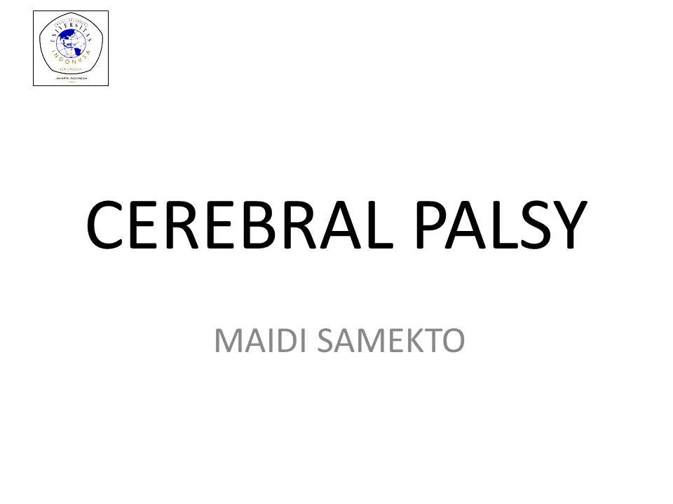 CEREBRAL PALSY MAIDI SAMEKTO