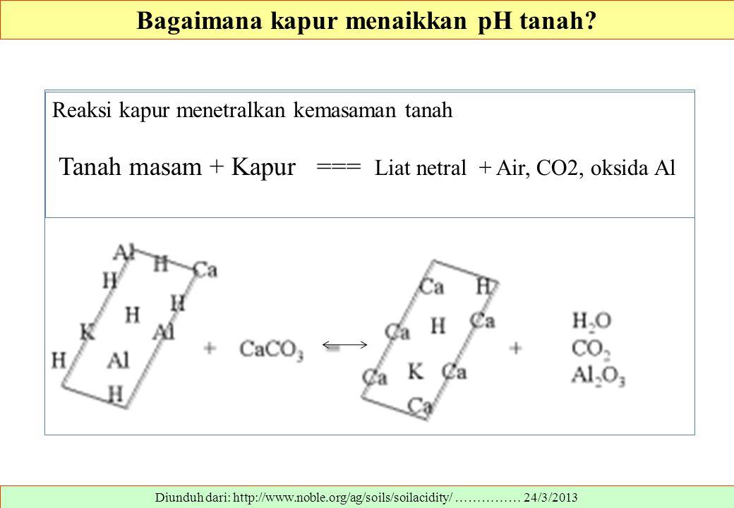 Bagaimana kapur menaikkan pH tanah