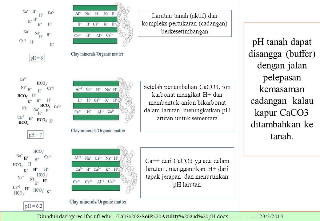 Larutan tanah (aktif) dan kompleks pertukaran (cadangan) berkesetimbangan