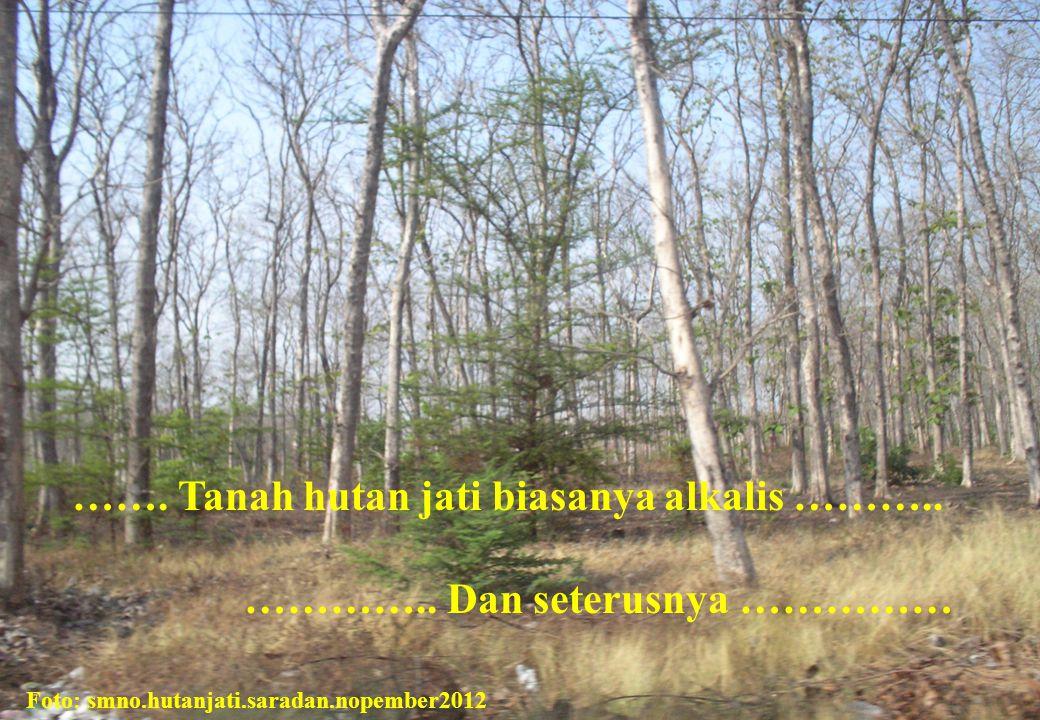 ……. Tanah hutan jati biasanya alkalis ………..