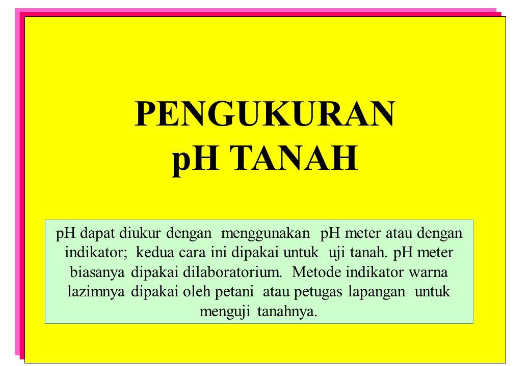 PENGUKURAN pH TANAH.