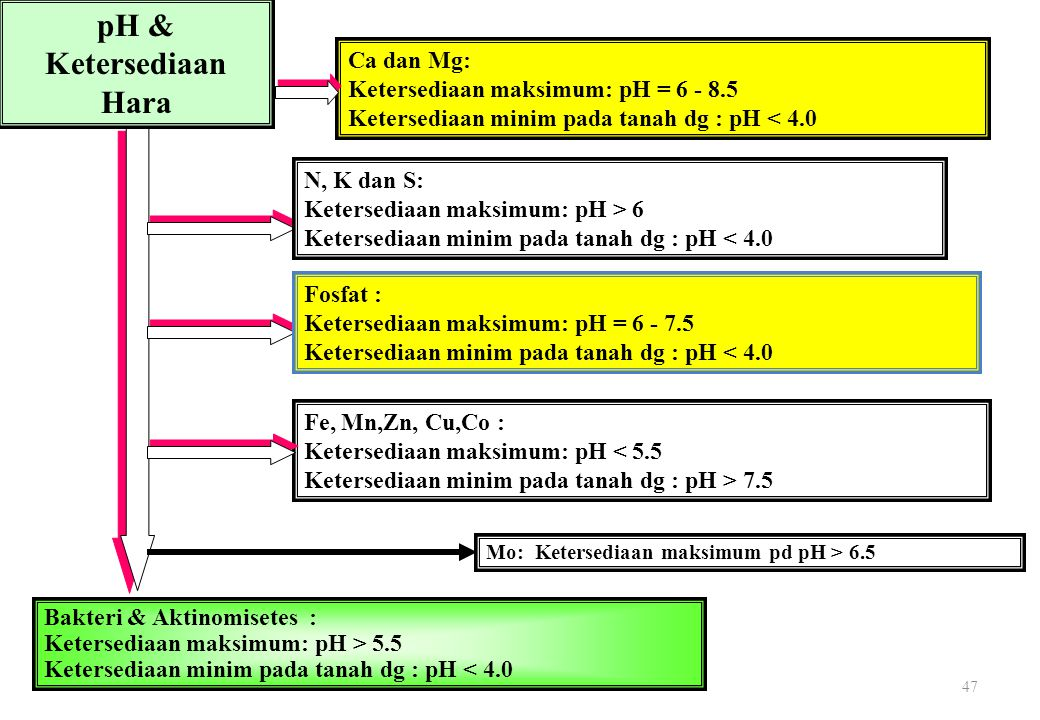 pH & Ketersediaan Hara Ca dan Mg: Ketersediaan maksimum: pH = 6 - 8.5