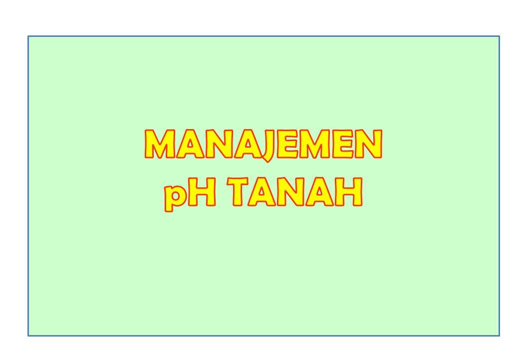 MANAJEMEN pH TANAH Foto:smno.kampus.ub.agustus2012