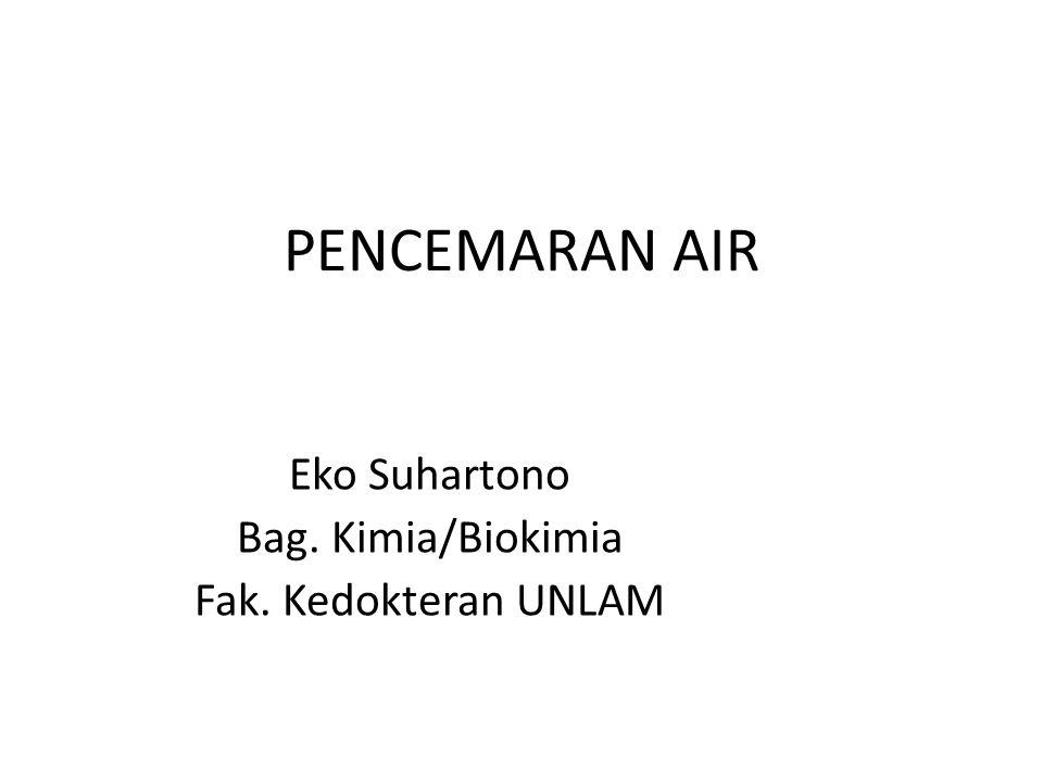 Eko Suhartono Bag. Kimia/Biokimia Fak. Kedokteran UNLAM