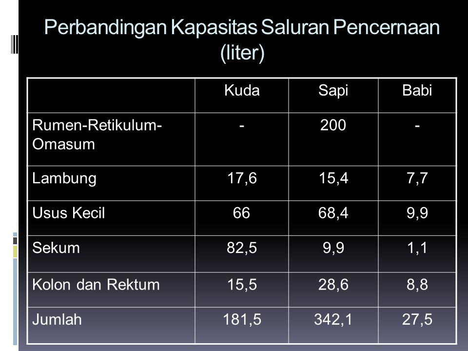 Perbandingan Kapasitas Saluran Pencernaan (liter)