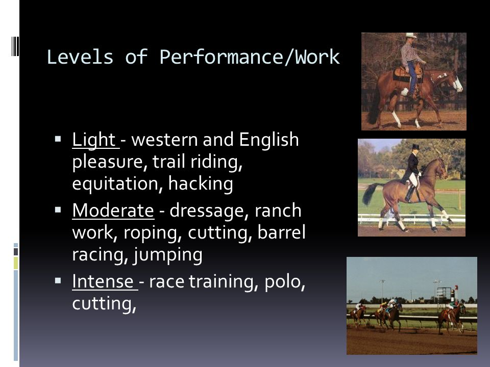 Levels of Performance/Work