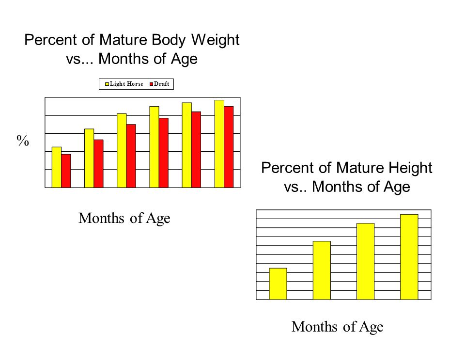 Percent of Mature Body Weight vs... Months of Age