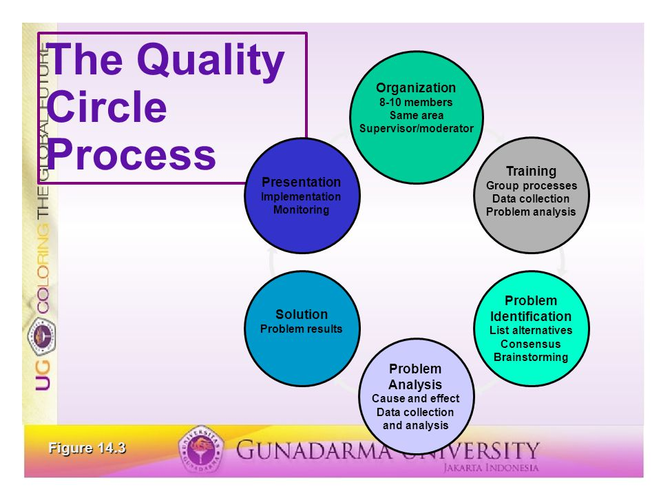 The Quality Circle Process