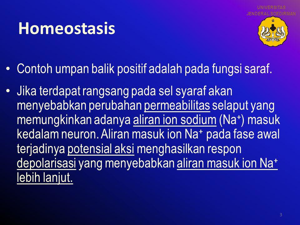 Homeostasis Contoh umpan balik positif adalah pada fungsi saraf.