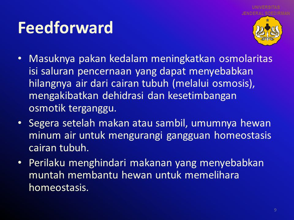 UNIVERSITAS JENDERAL SOEDIRMAN. Feedforward.