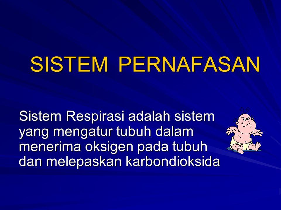 SISTEM PERNAFASAN Sistem Respirasi adalah sistem yang mengatur tubuh dalam menerima oksigen pada tubuh dan melepaskan karbondioksida.
