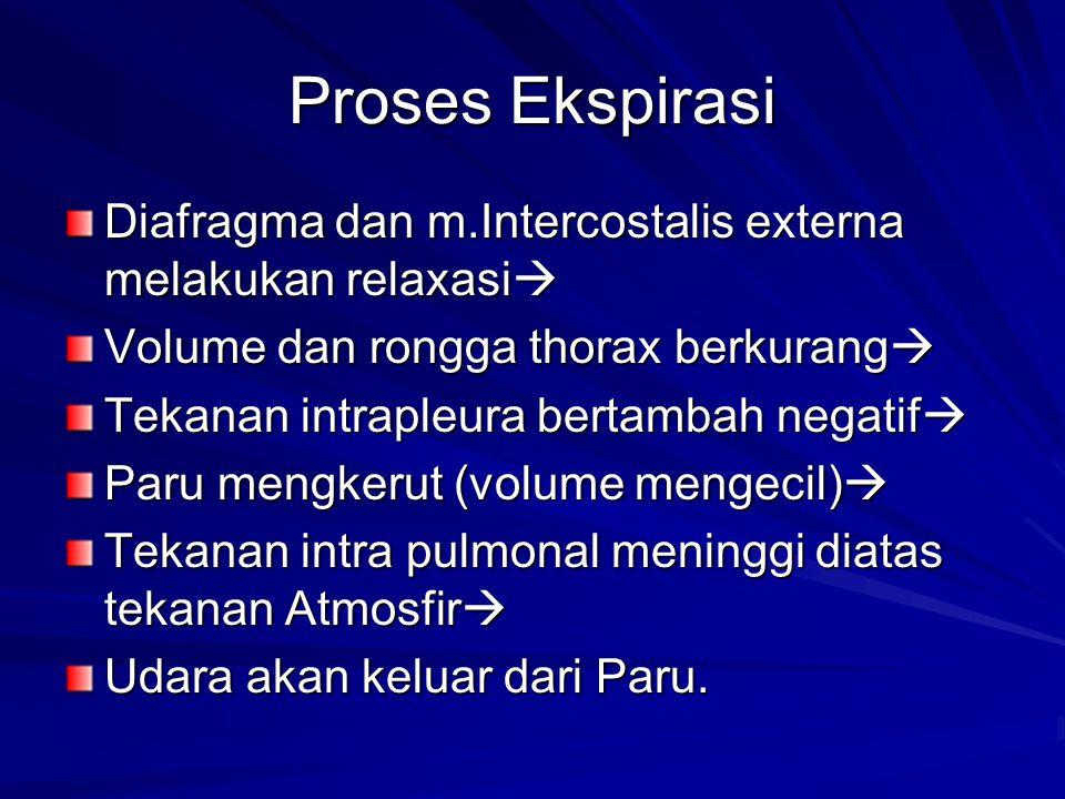 Proses Ekspirasi Diafragma dan m.Intercostalis externa melakukan relaxasi Volume dan rongga thorax berkurang