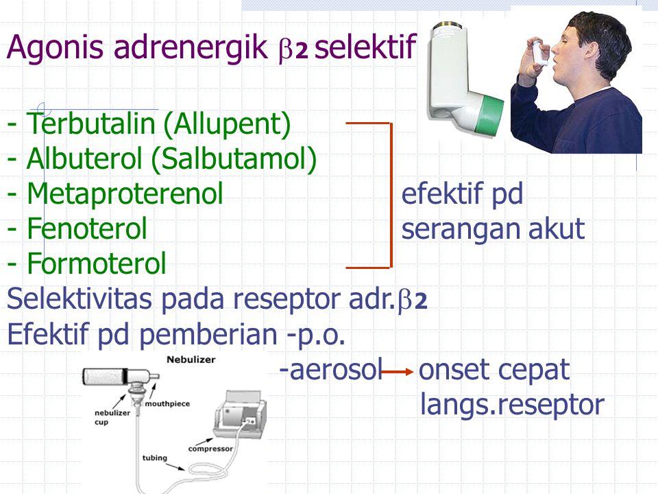 Agonis adrenergik 2 selektif