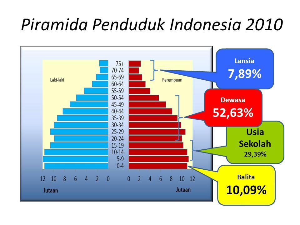 Piramida Penduduk Indonesia 2010