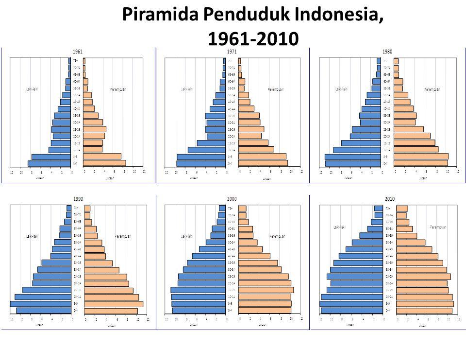 Piramida Penduduk Indonesia, 1961-2010