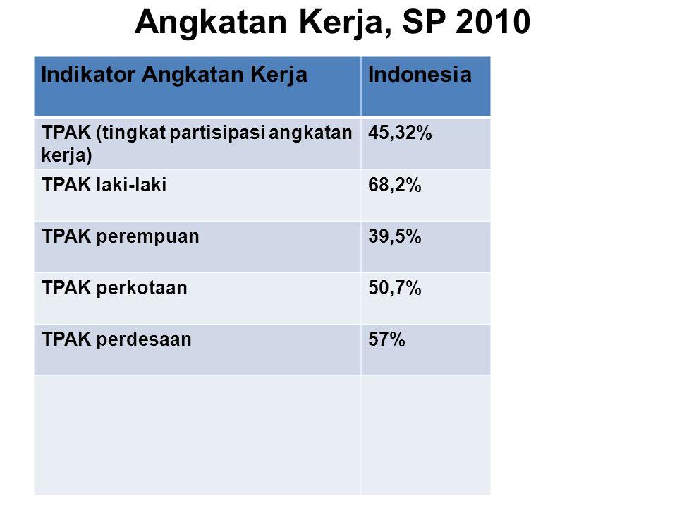 Angkatan Kerja, SP 2010 Indikator Angkatan Kerja Indonesia