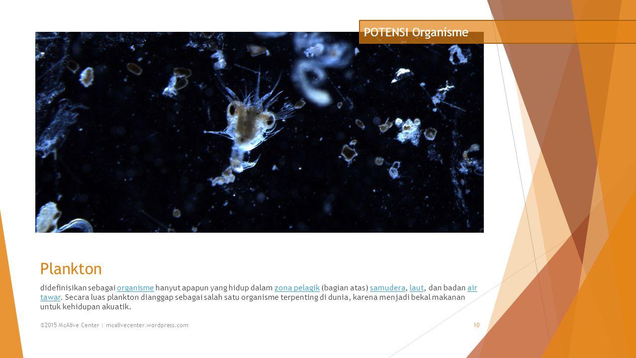 Plankton POTENSI Organisme
