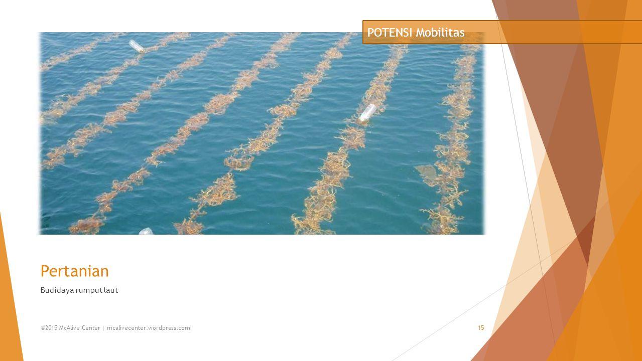 Pertanian POTENSI Mobilitas Budidaya rumput laut