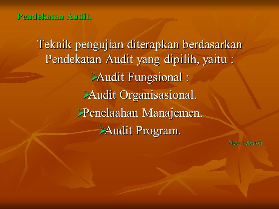 Pendekatan Audit. Teknik pengujian diterapkan berdasarkan Pendekatan Audit yang dipilih, yaitu : Audit Fungsional :