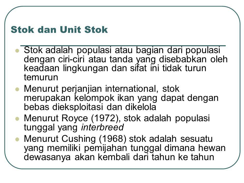 Stok dan Unit Stok
