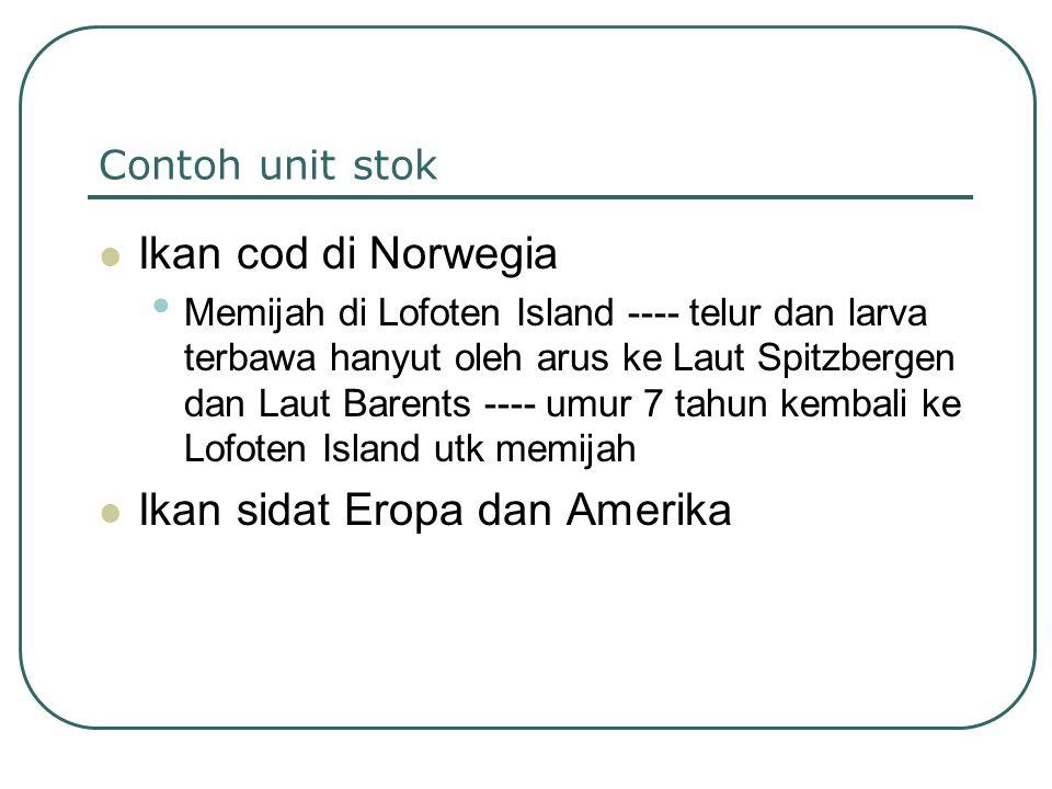 Ikan sidat Eropa dan Amerika
