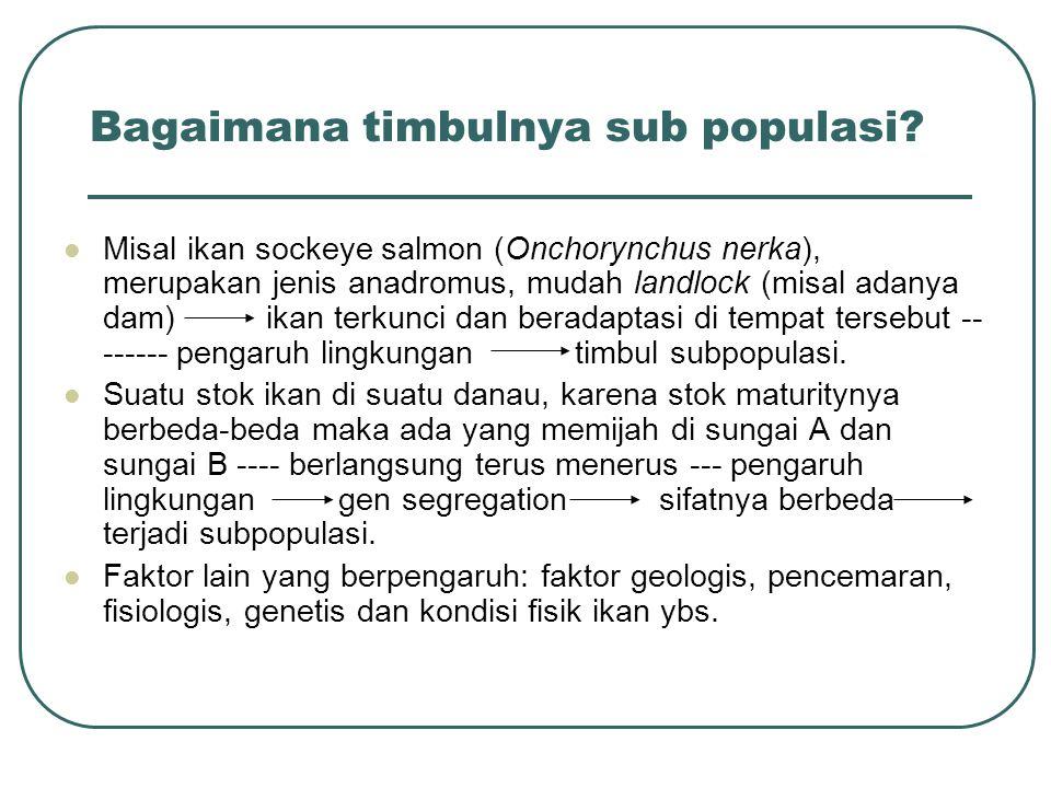 Bagaimana timbulnya sub populasi