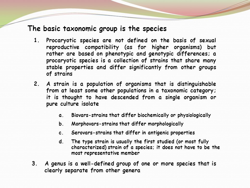 The basic taxonomic group is the species