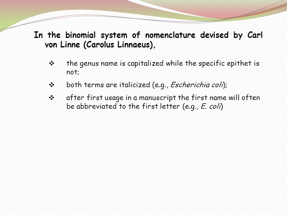 In the binomial system of nomenclature devised by Carl von Linne (Carolus Linnaeus),