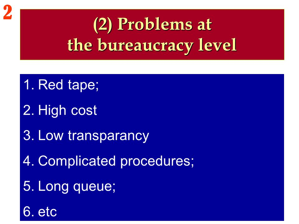 (2) Problems at the bureaucracy level