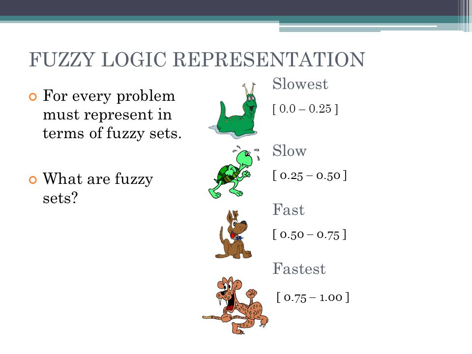 FUZZY LOGIC REPRESENTATION