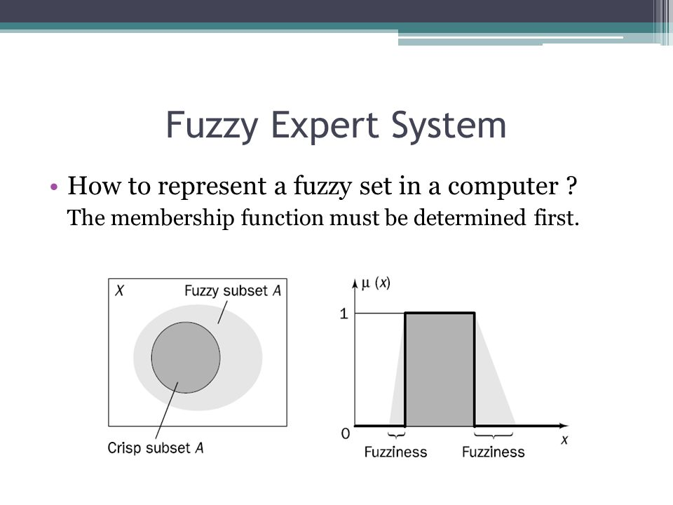 Fuzzy Expert System How to represent a fuzzy set in a computer