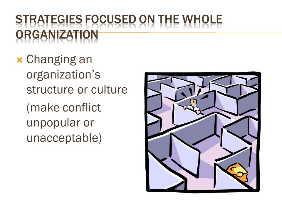 Strategies Focused on the Whole Organization
