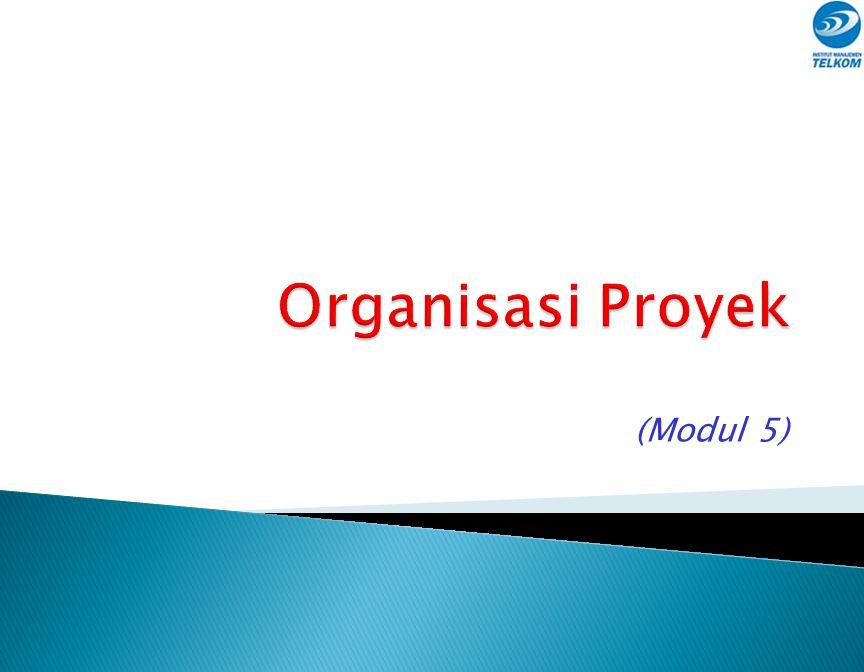 Organisasi Proyek (Modul 5)