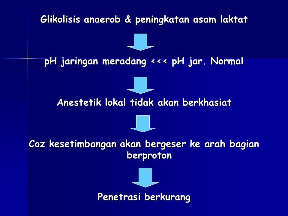 Glikolisis anaerob & peningkatan asam laktat