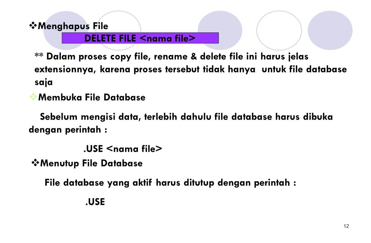 DELETE FILE <nama file>