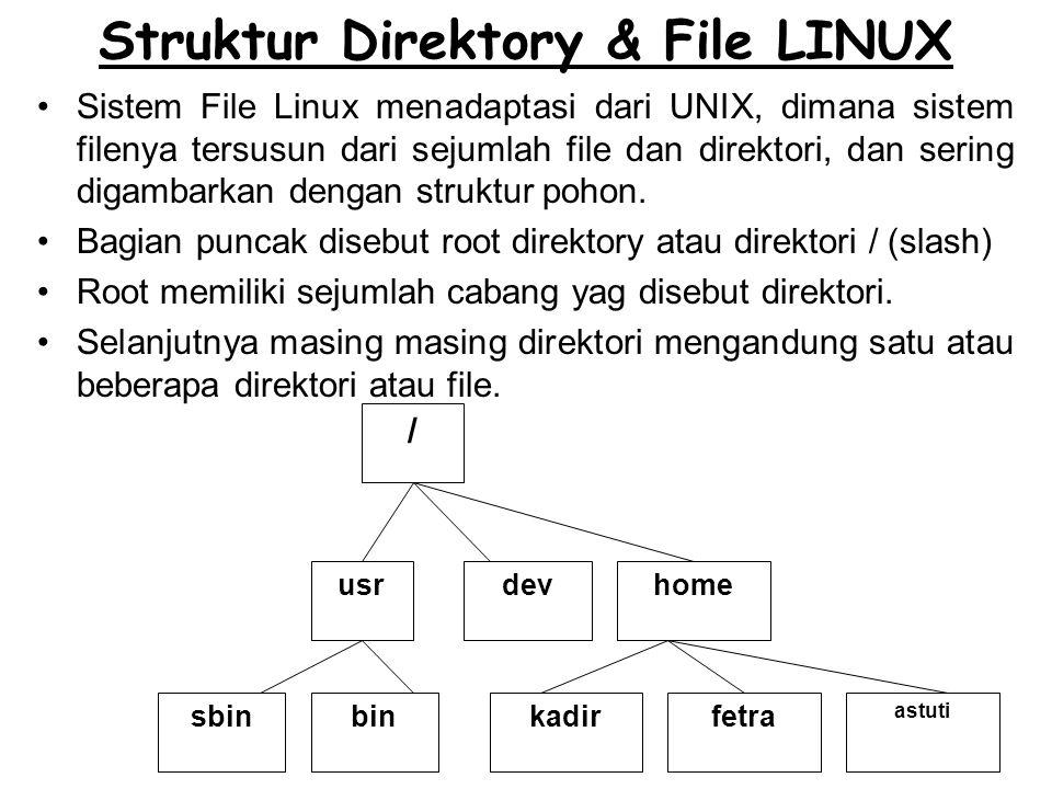 Struktur Direktory & File LINUX
