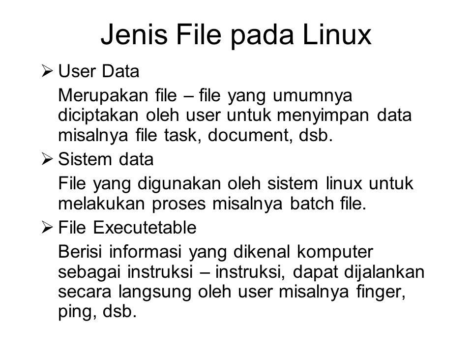 Jenis File pada Linux User Data