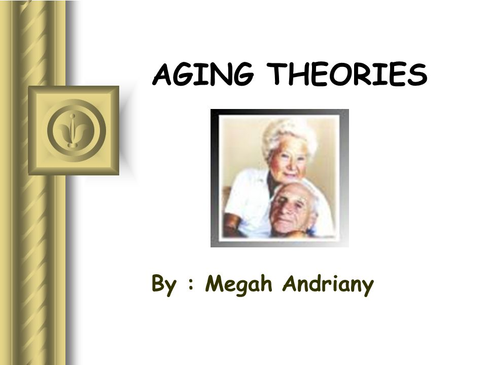 AGING THEORIES By : Megah Andriany